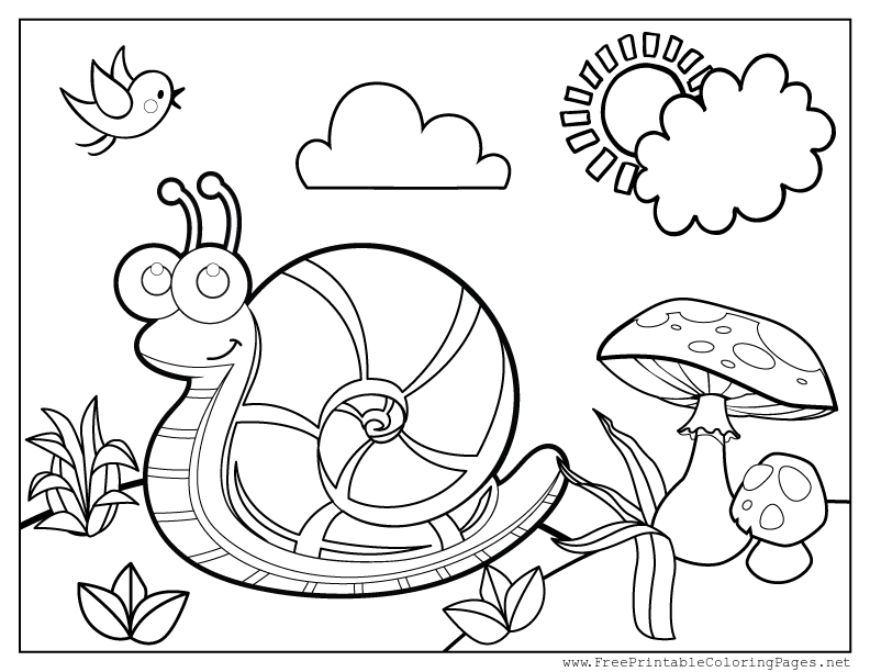 celebrate-picture-books-picture-book-review-snail-coloring-page-2