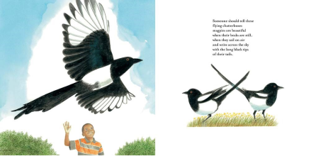 celebrate-picture-books-picture-book-review-southwest-sunrise-magpies
