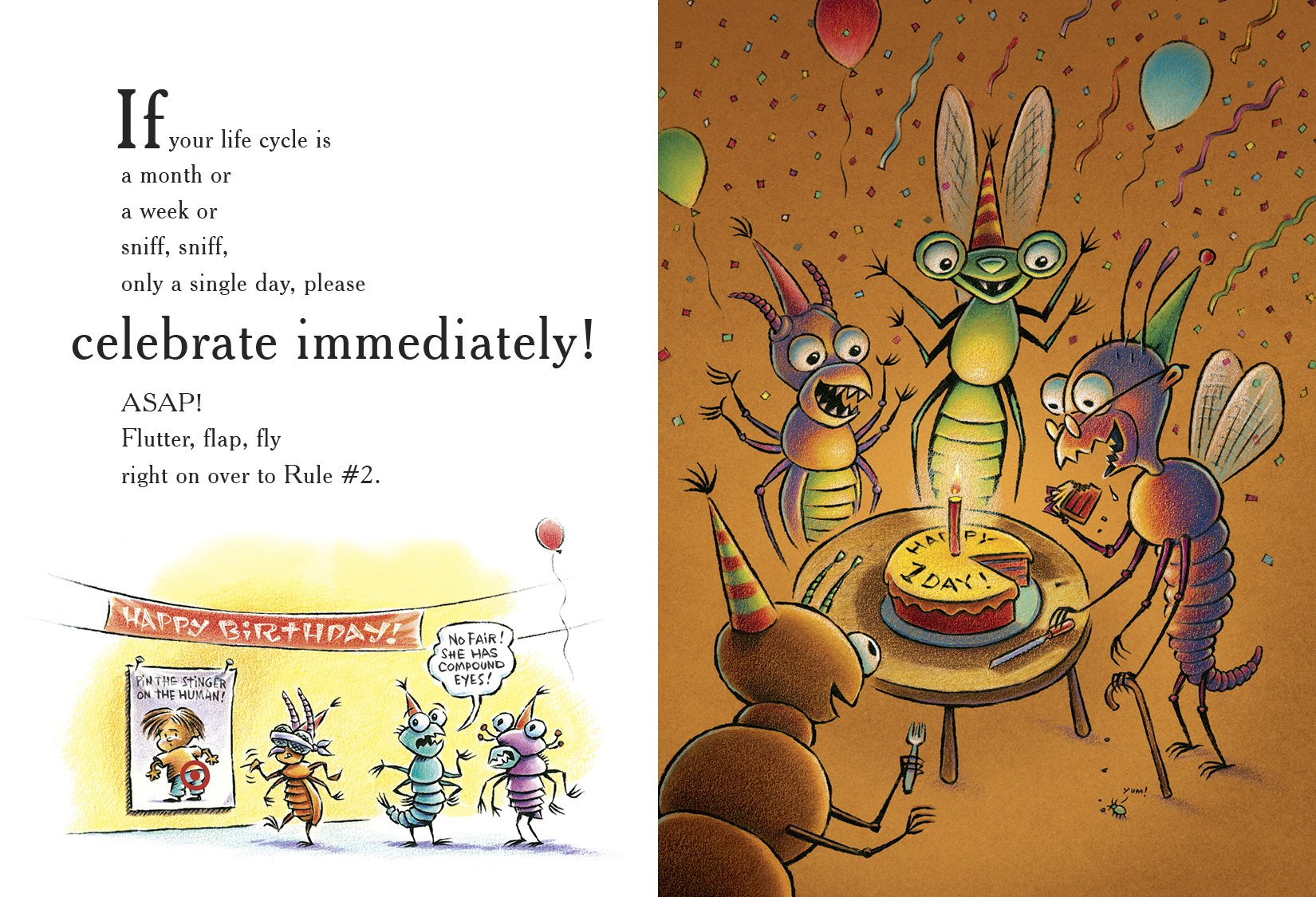 celebrate-picture-books-picture-book-review-ten-rules-of-the-birthday-wish-insects