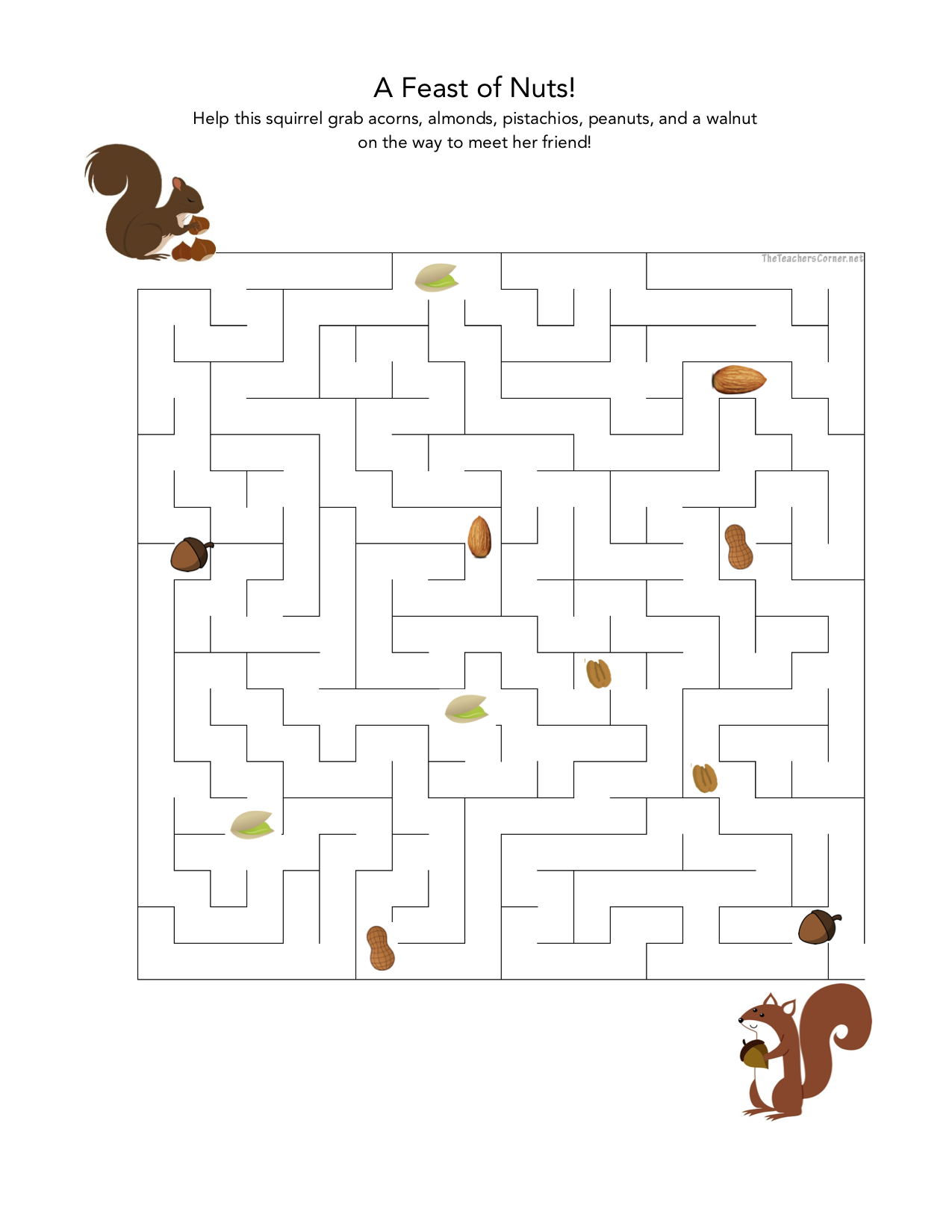 celebrate-picture-books-picture-book-review-squirrel-maze-puzzle