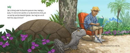 celebrate-picture-books-picture-book-review-memoirs-of-a-tortoise-july