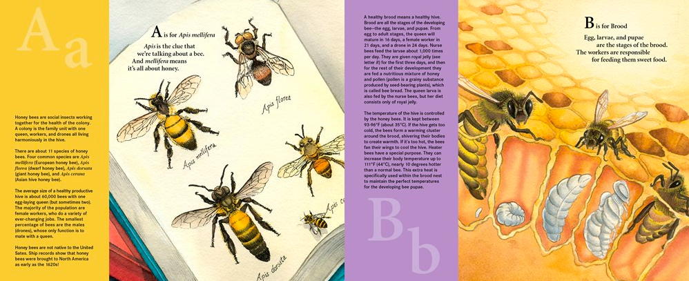 celebrate-picture-books-picture-book-review-h-is-for-honey-bee-A-and-B