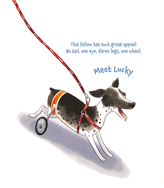 celebrate-picture-books-picture-book-review-tails-from-the-animal-shelter-special-needs-pets
