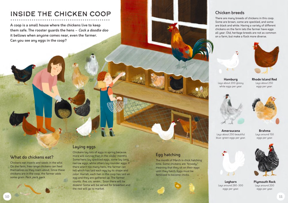 celebrate-picture-books-picture-book-review-the-farm-that-feeds-us-chicken-coop
