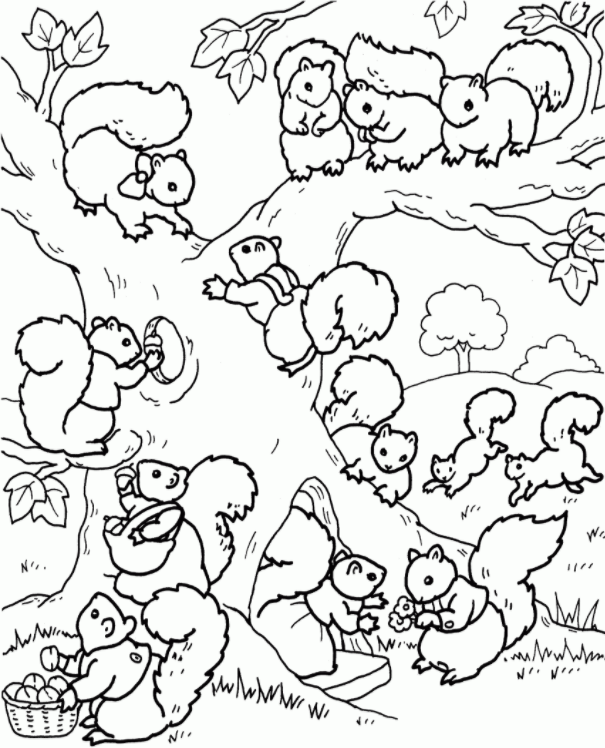 celebrate-picture-books-picture-book-review-squirrel-community-coloring-page