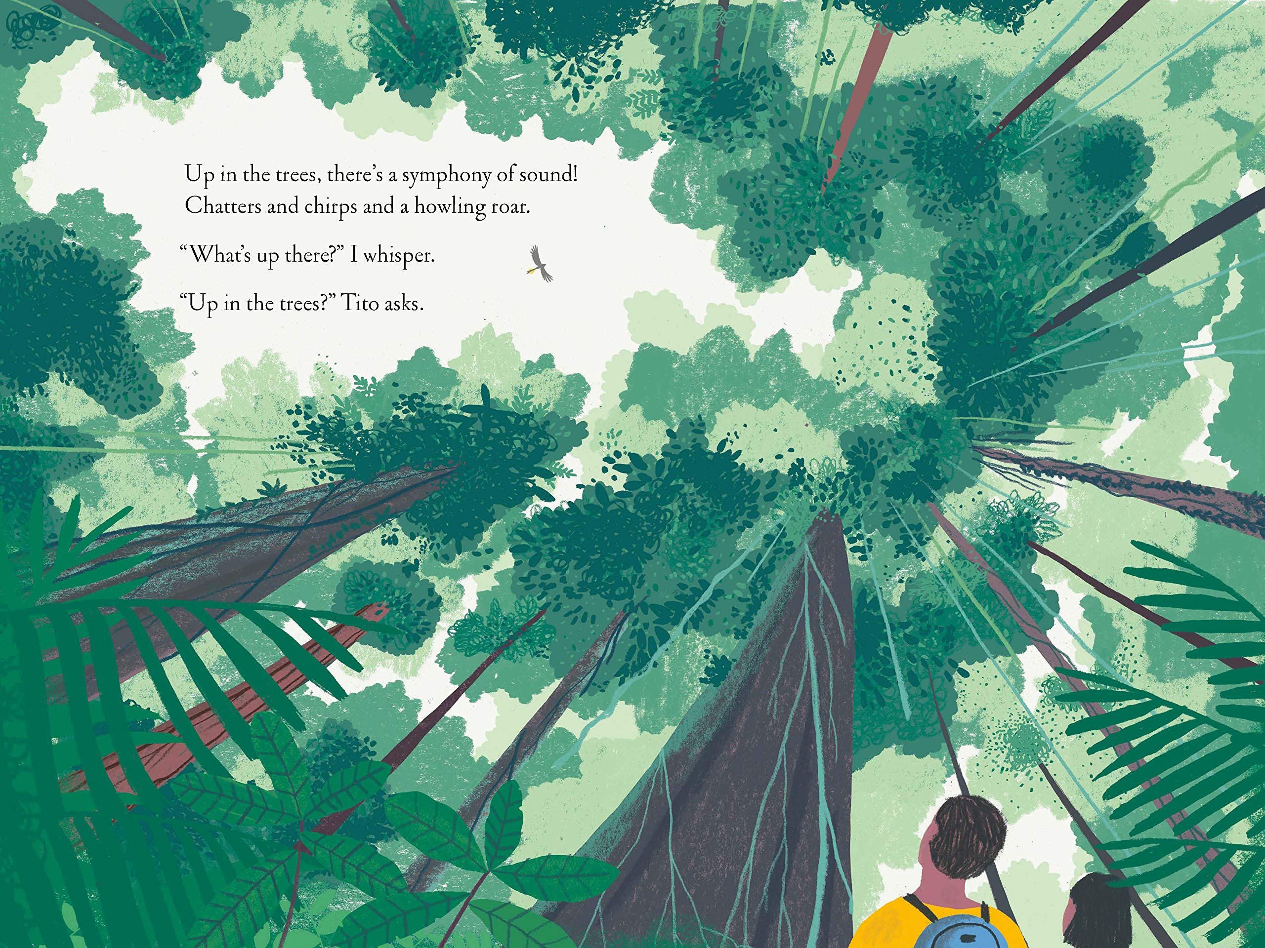 celebrate-picture-books-picture-book-review-over-and-under-the-rainforest-treetops
