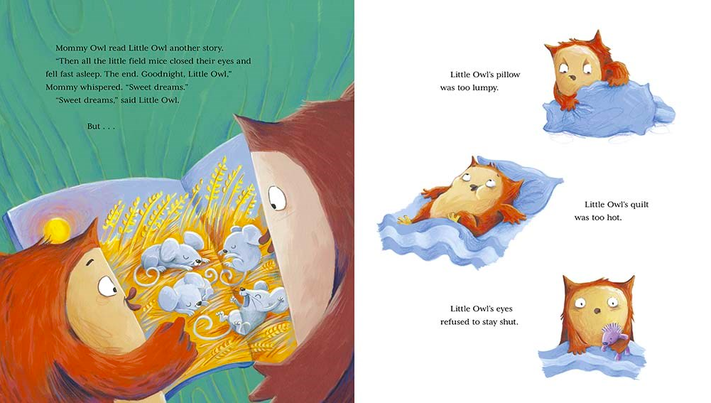 celebrate-picture-books-picture-book-review-little-owl's-bedtime-second-story