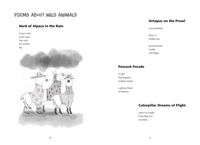 celebrate-picture-books-picture-book-review-this-poem-is-a-nest-animals