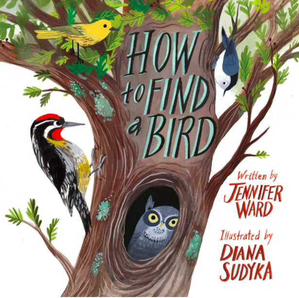 celebrate-picture-books-picture-book-review-how-to-find-a-bird-cover