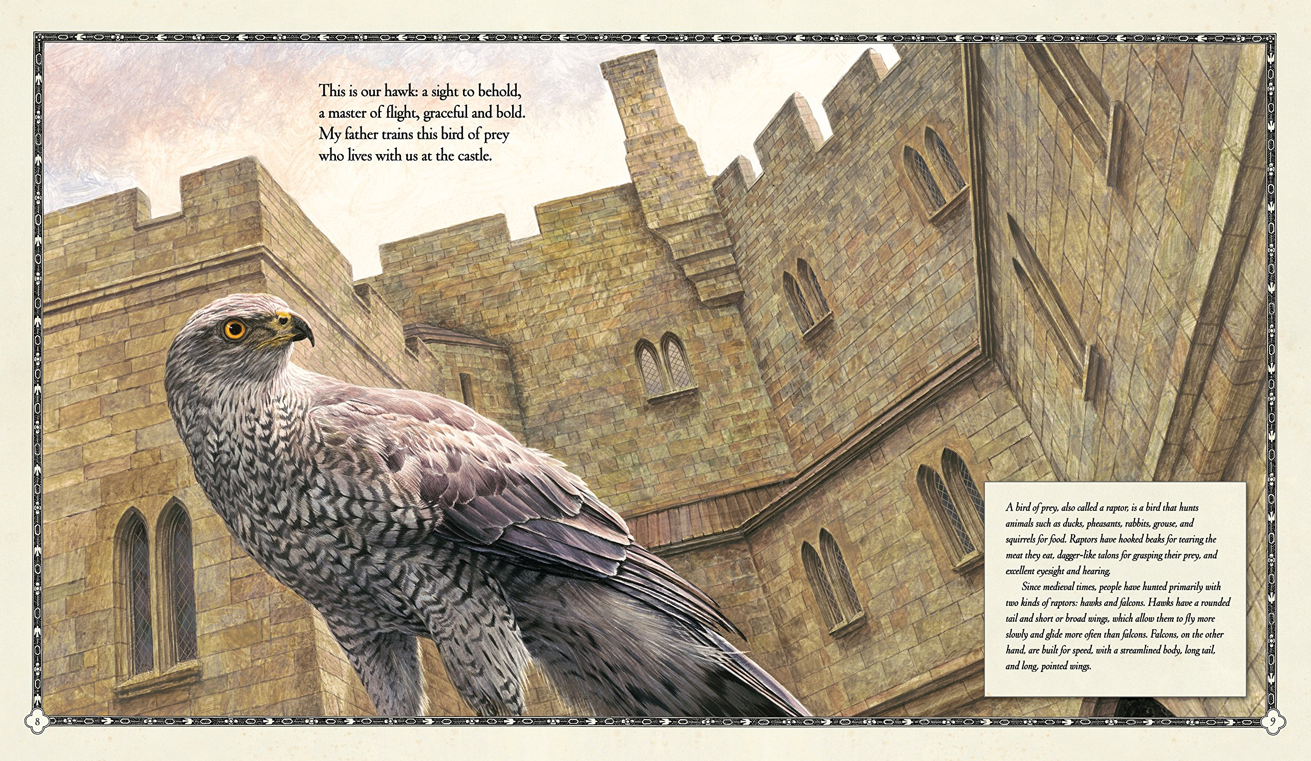 celebrate-picture-books-picture-book-review-the-hawk-of-the-castle-hawk