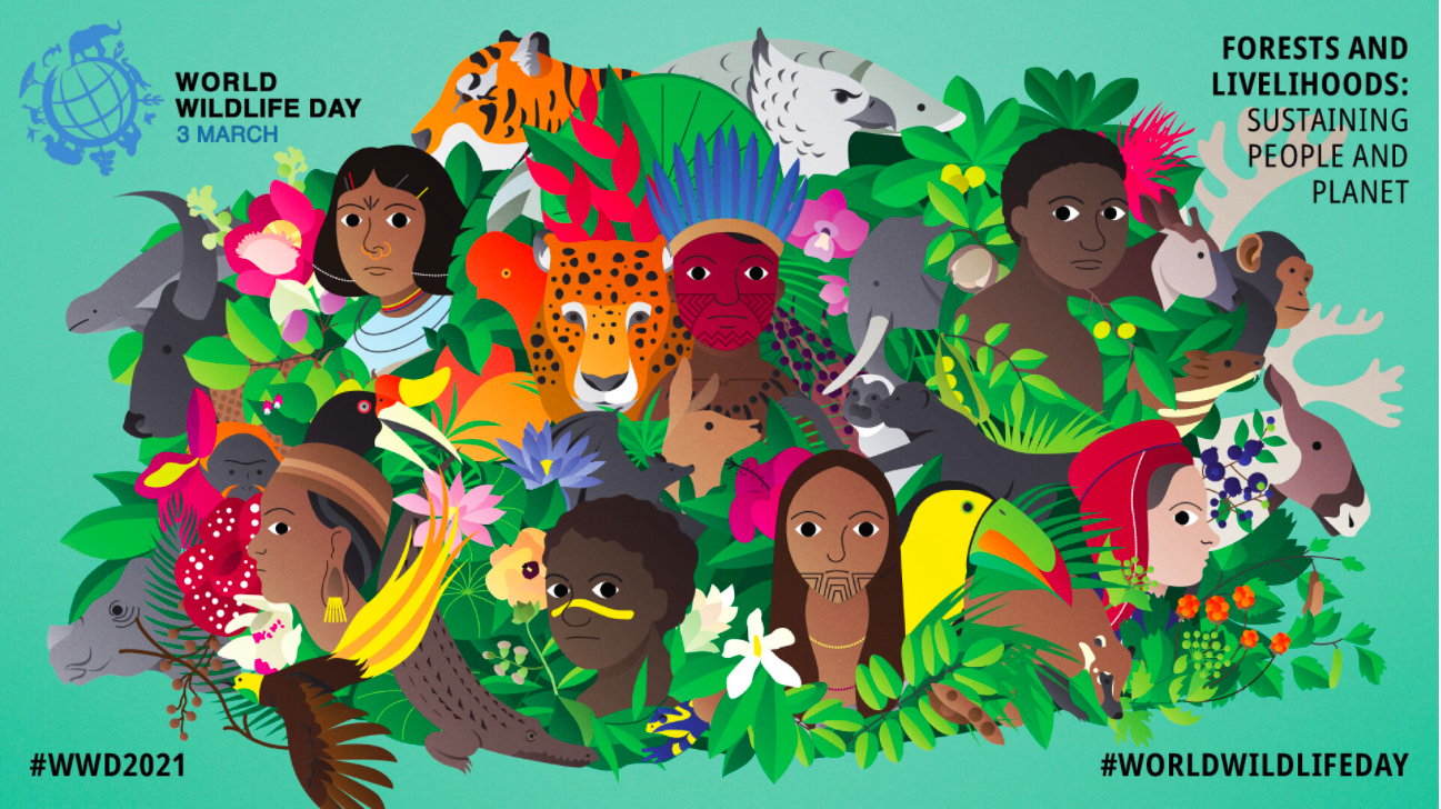 celebrate-picture-books-picture-book-review-world-wildlife-day-poster-2021