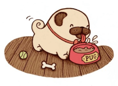 celebrate-picture-books-picture-book-review-Pig-Meets-Pug-pug