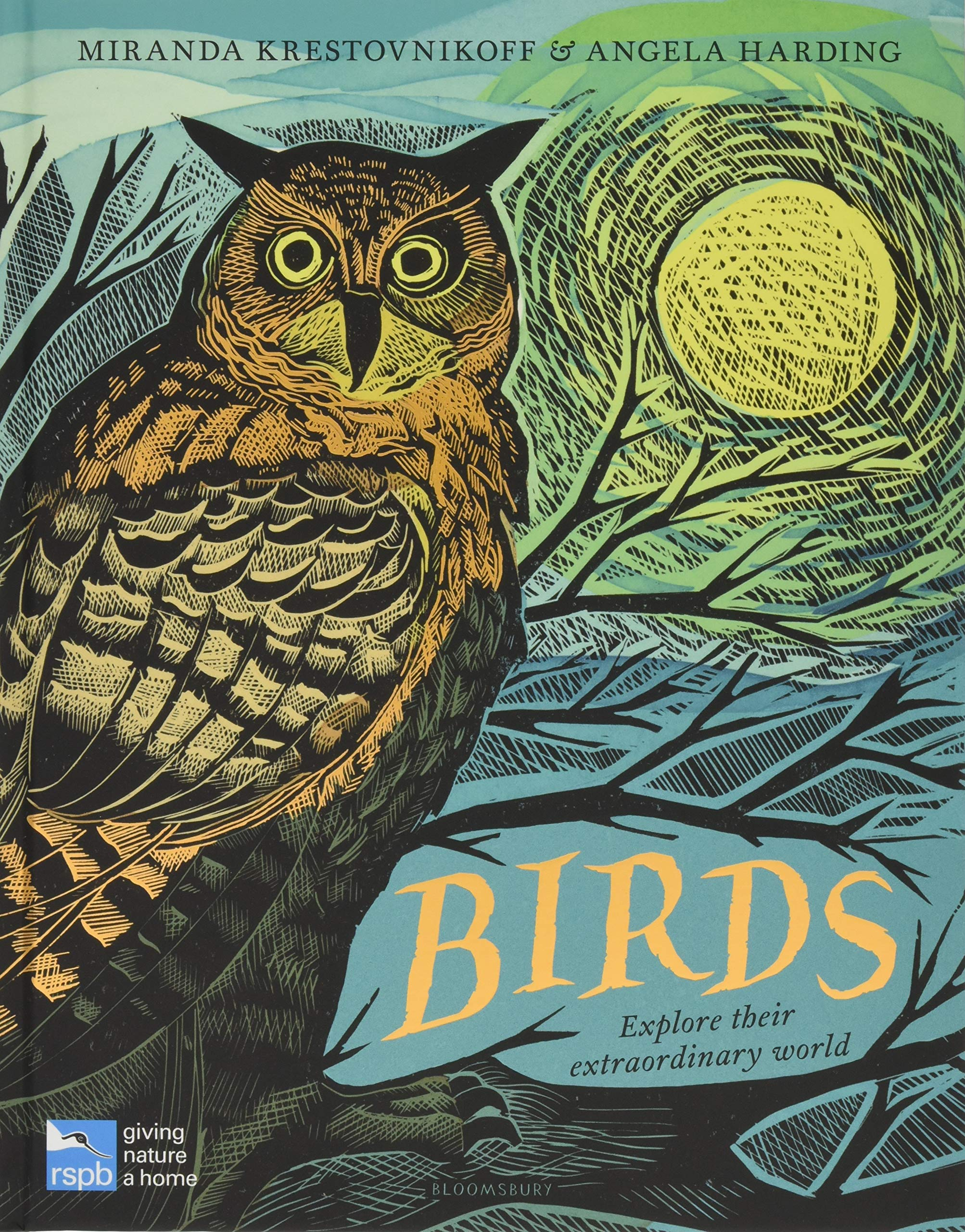 celebrate-picture-books-picture-book-review-birds-explore-their-extraordinary-world-cover