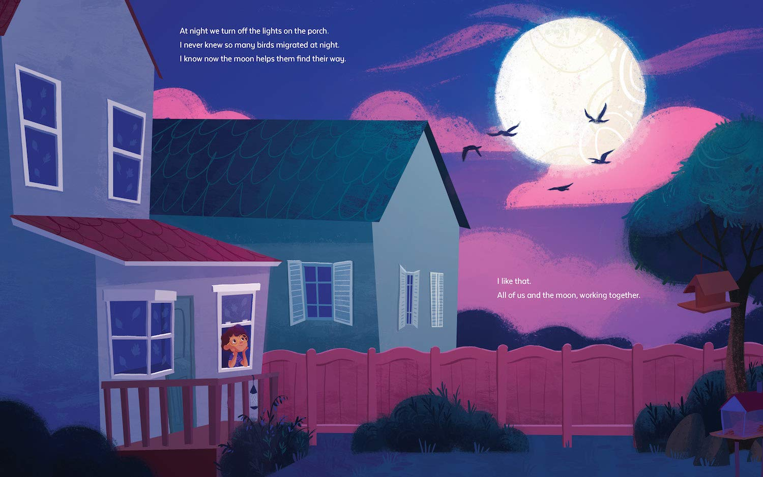 celebrate-picture-books-picture-book-review-a-garden-to-save-the-birds-night