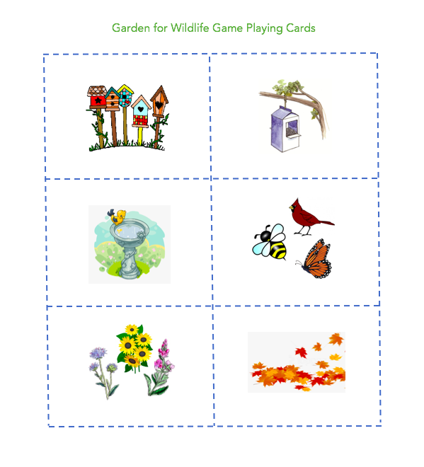 celebrate-picture-books-picture-book-review-garden-for-wild-life-playing-cards
