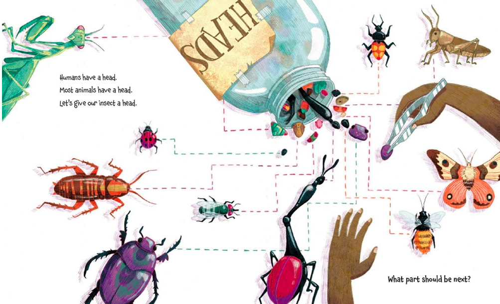 celebrate-picture-books-picture-book-review-how-to-build-an-insect-heads