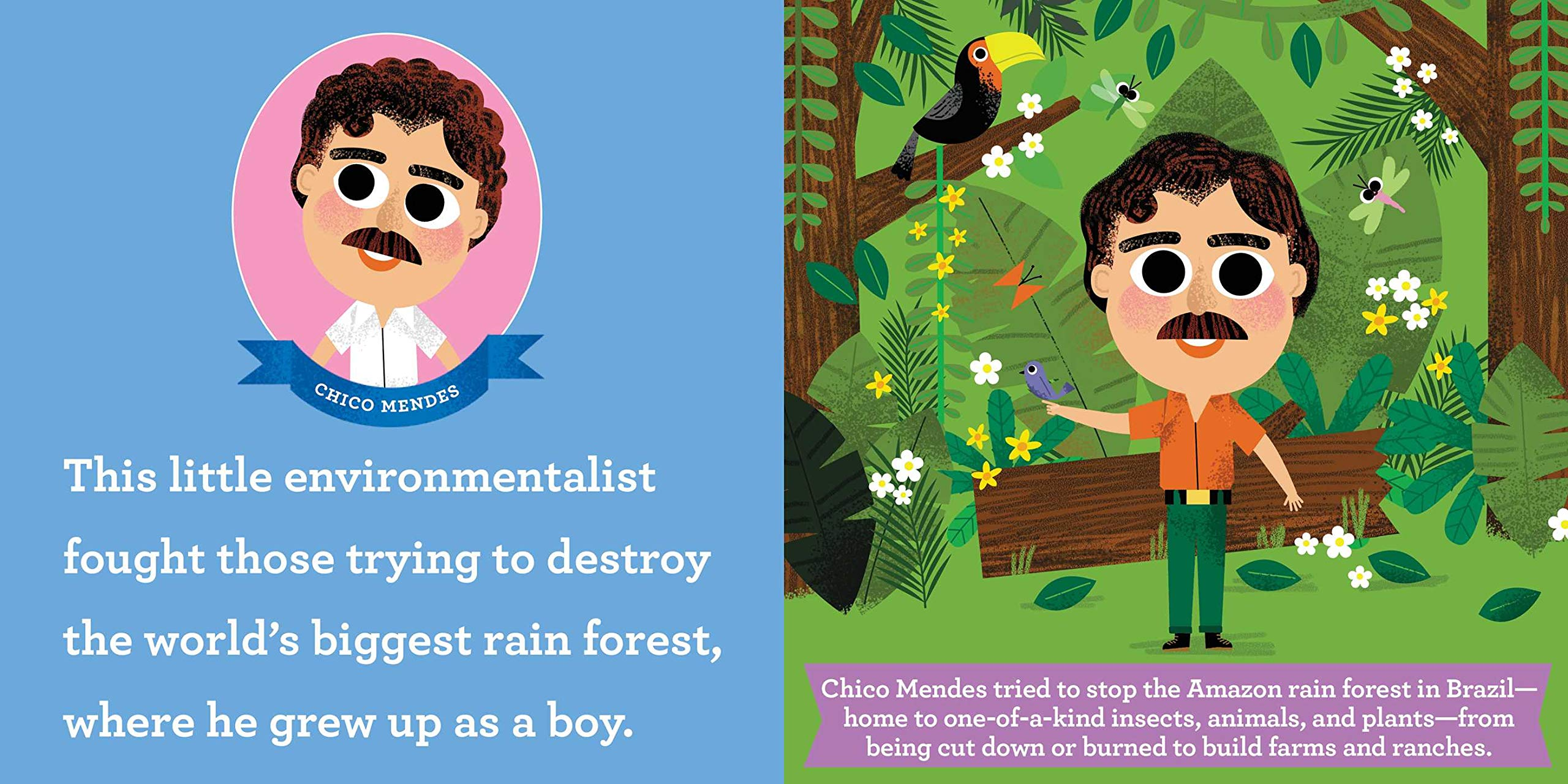celebrate-picture-books-picture-book-review-this-little-environmentalist-chico-mendes