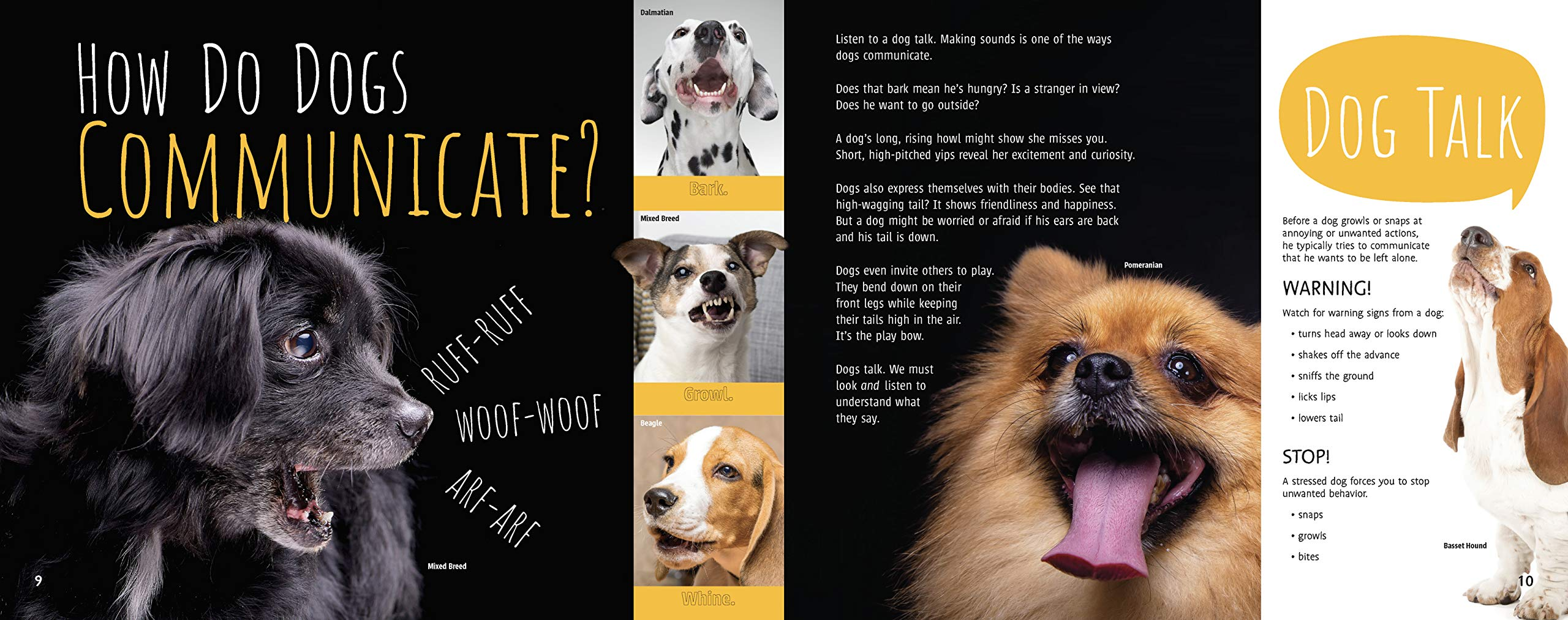 celebrate-picture-books-picture-book-review-woof!-the-truth-about-dogs-communicate