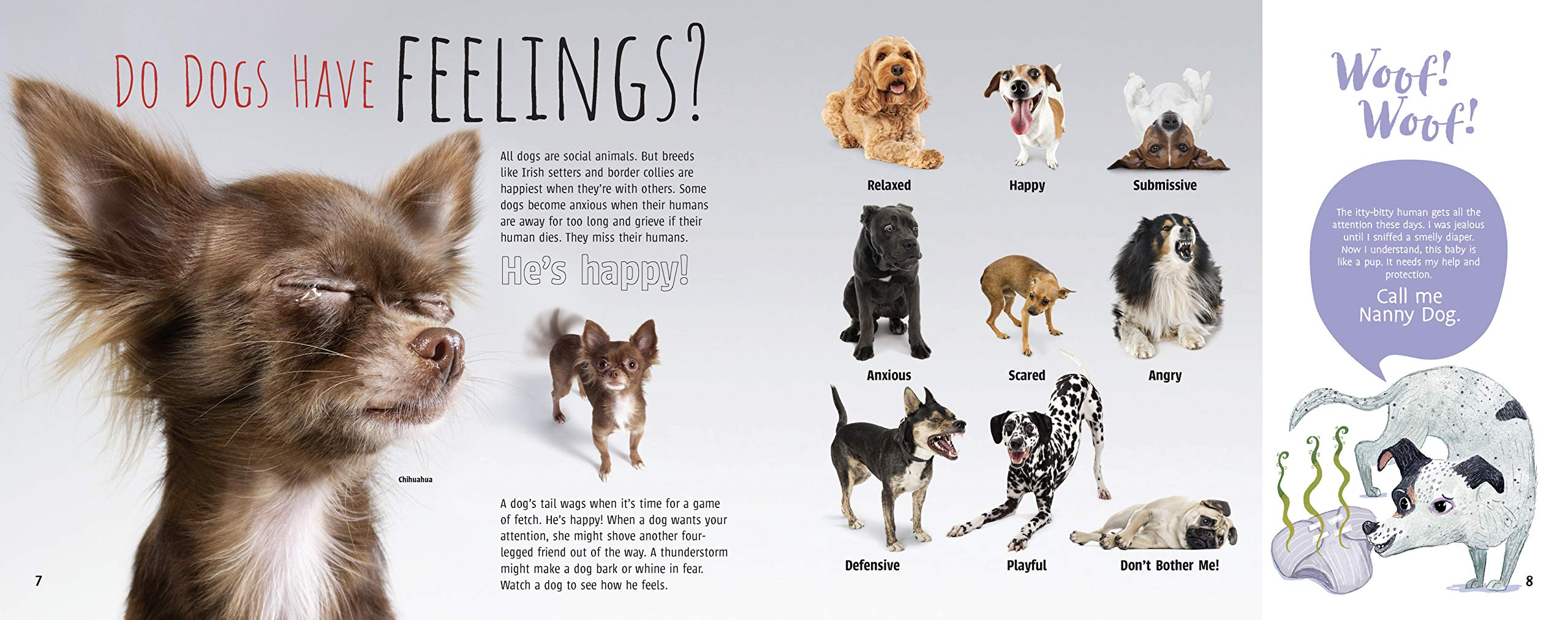celebrate-picture-books-picture-book-review-woof!-the-truth-about-dogs-feelings