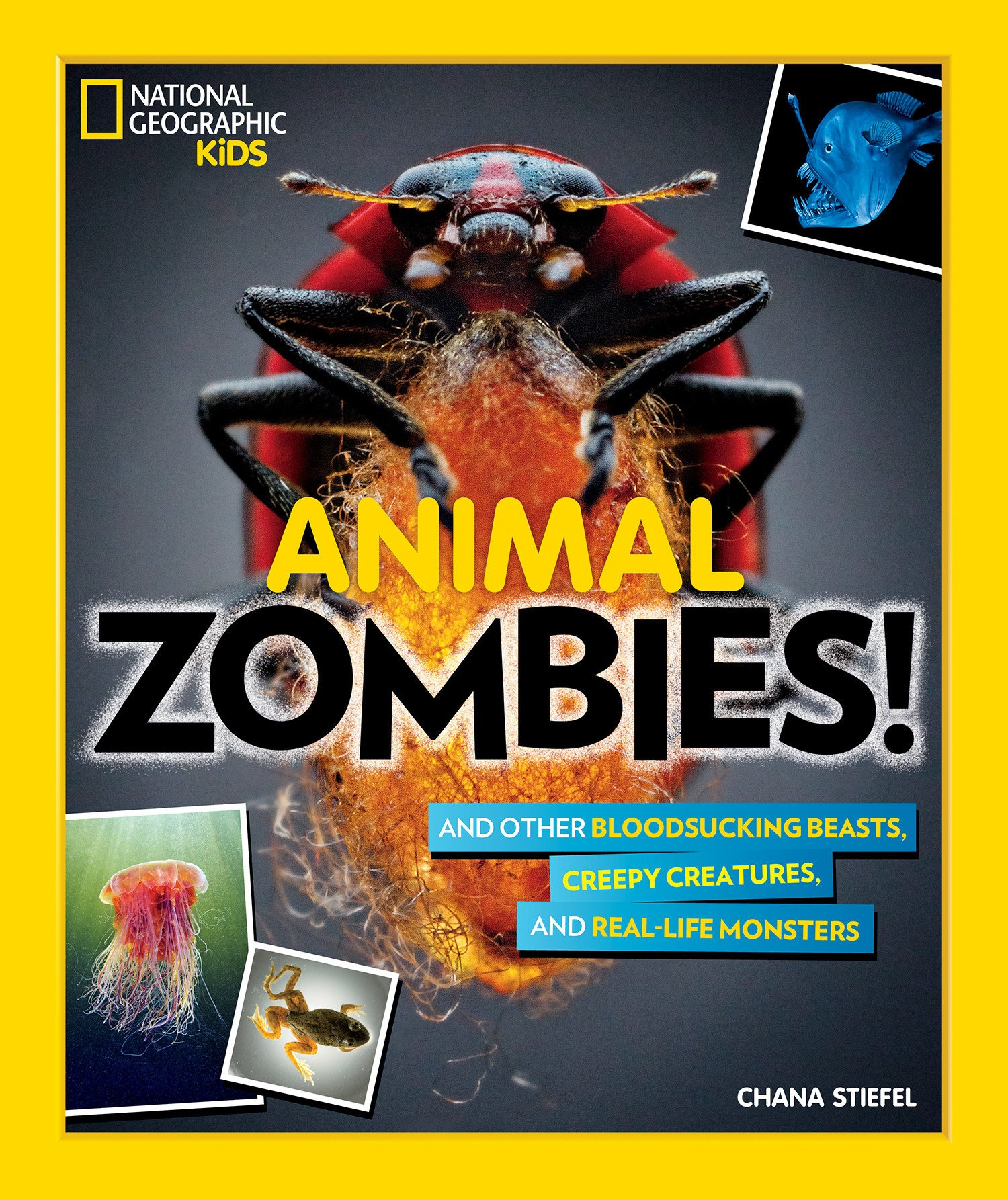 celebrate-picture-books-picture-book-review-animal-zombies-cover