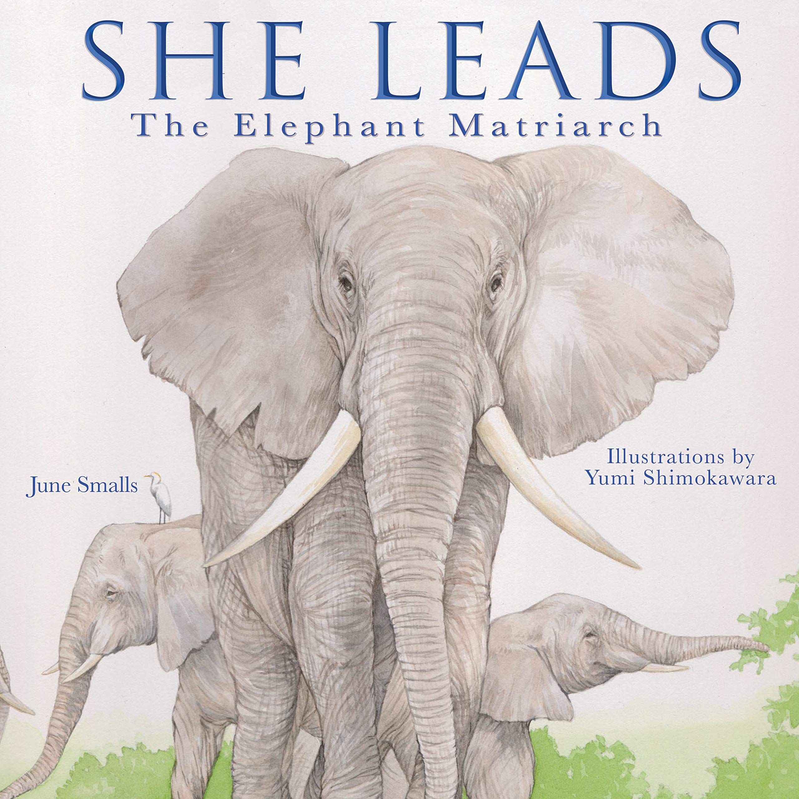 celebrate-picture-books-picture-book-review-she-leads-cover