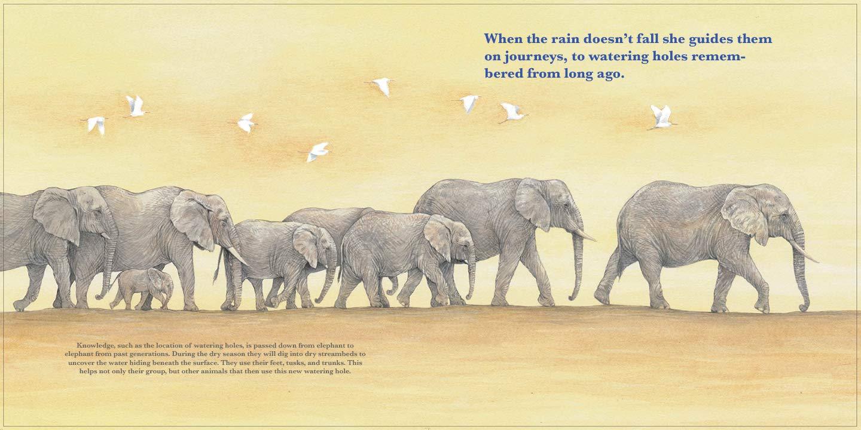celebrate-picture-books-picture-book-review-she-leads-rain