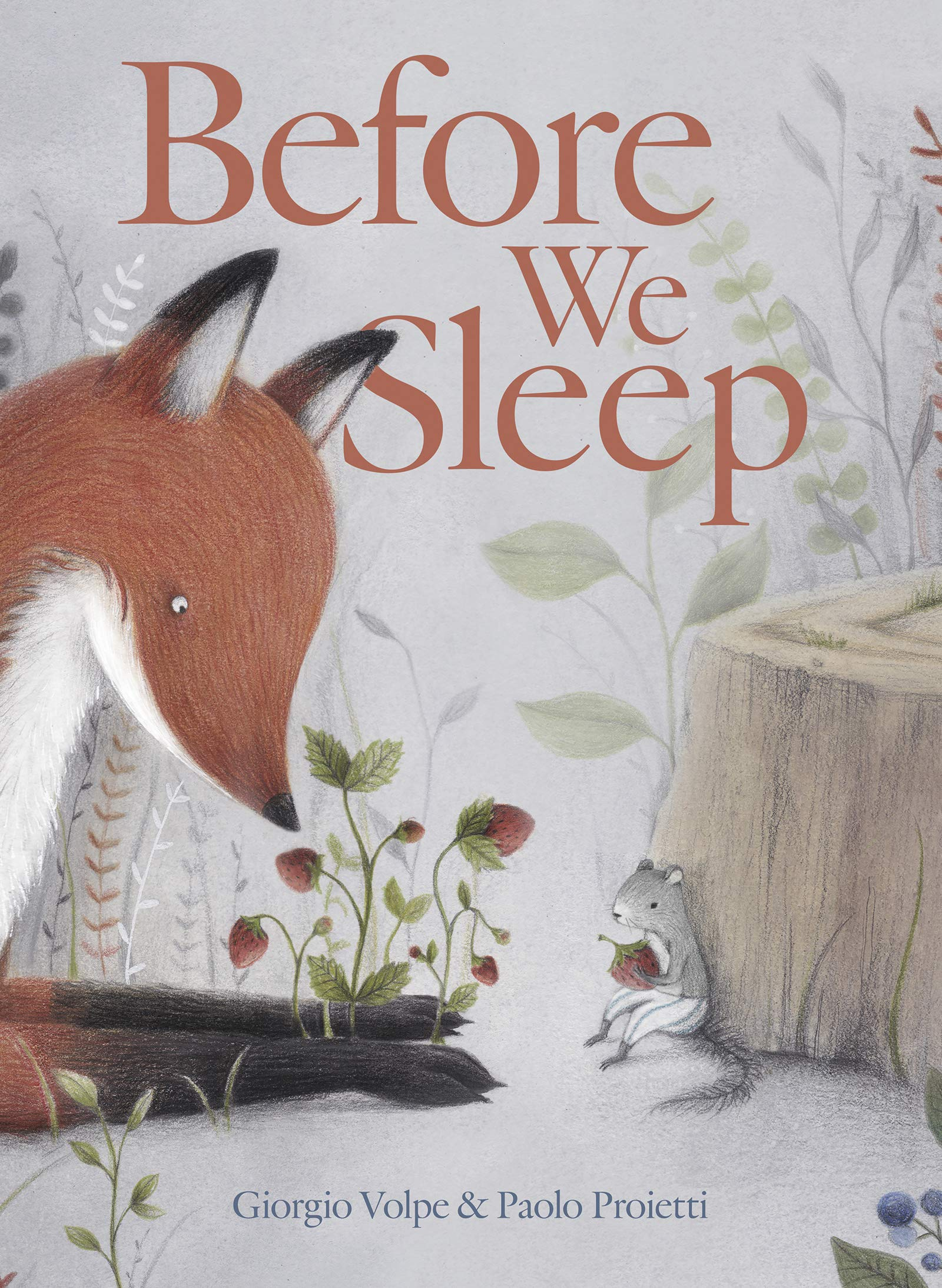 celebrate-picture-books-picture-book-review-before-we-sleep-cover