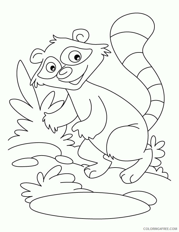 celebrate-picture-books-picture-book-review-raccoon-coloring-page-2