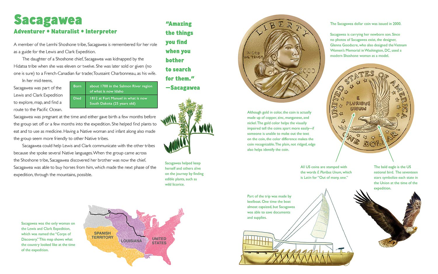 celebrate-picture-books-picture-book-review-she's-on-the-money-sacagawea
