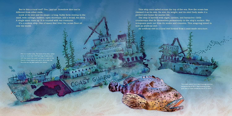 celebrate-picture-books-picture-book-review-shipwreck-reefs-coast-guard
