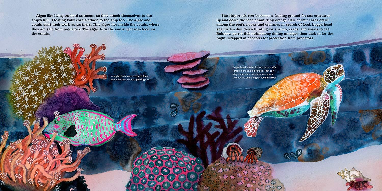 celebrate-picture-books-picture-book-review-shipwreck-reefs-turtle